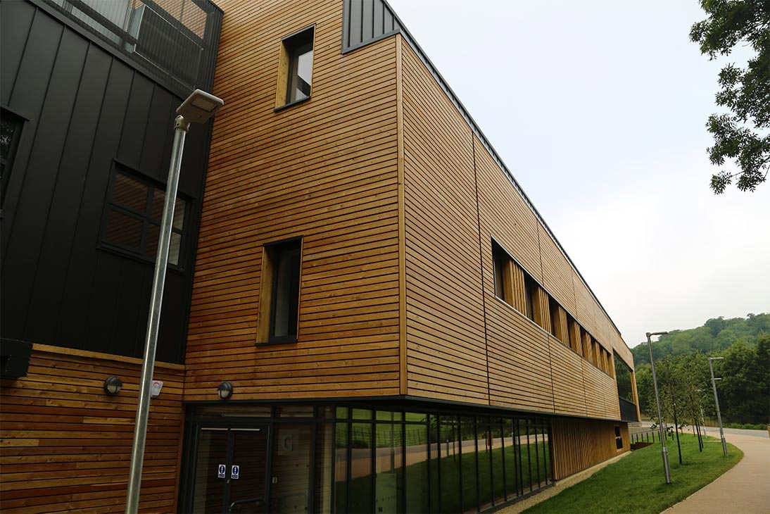 Cedar Wood Wall Cladding